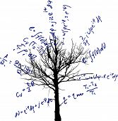 stock photo of mathematics  - tree with mathematical equations isolated on white background illustration - JPG