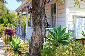 pic of drought  - Drought tolerant landscaping taken in front of a house - JPG