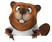 stock photo of beaver  - Beaver with a white tshirt - JPG
