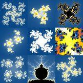 foto of mandelbrot  - Set of fractal floral patterns textures or backgrounds - JPG