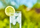 picture of glass water  - Sparkling water and lemon slice on glass with an ice sunny day  - JPG