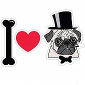 stock photo of pug  - I Love Pugs Old Fashion Gentleman With Hat Cigar And Tie Bow - JPG