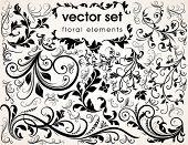 pic of floral design  - Floral design elements - JPG