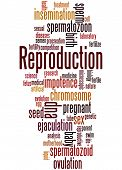 Постер, плакат: Reproduction Word Cloud Concept 3