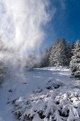 Beautiful Winter Wonderland Landscape With Snow Covered Spruce Forest And Blowing Snow Off The Trees poster