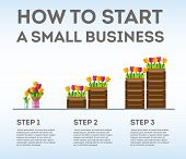 Infographic Small Business In Three Steps. The Emergence Of Small Business. Flowers As The Birth Of  poster