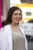 LOS ANGELES - JUNE 30: Mayim Bialik at the Premiere of 'Horrible Bosses' at Grauman's Chinese Theatr