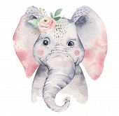 A Poster With A Baby Elephant. Watercolor Cartoon Elephant Tropical Animal Illustration. Jungle Exot poster