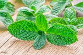 Fresh apple mint on the wooden background. poster