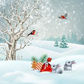 Christmas Winter Scene. Vector Snowy Landscape. Frosty Tree, Snow-covered Hills, Gifts And Rabbits poster