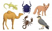 Desert Living Creatures Vector Illustrated Set Isolated On White Background poster