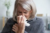 Ill Mature Woman Covered With Blanket Blowing Running Nose Sneeze poster