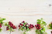 Flat Lay Red Ripe Lingonberry, Cowberry, Foxberry, On Light Wooden Background. Vegetation Of North A poster