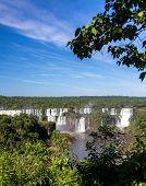 Постер, плакат: Водопад Игуасу Бразилия издалека