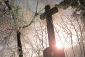 pic of divine mercy  - Winter in the Black Forest in Germany - JPG