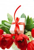 Image of fresh tulip bouquet in the pot, little gift box for mom, festive still life, isolated on wh