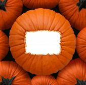 foto of centerpiece  - Pumpkin blank sign as a Halloween and thanksgiving celebration concept as a group of orange pumpkins and a centerpiece with a white copy space frame for a harvest time celebration message - JPG