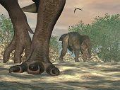 stock photo of pteranodon  - Close up on tyrannosaurus rex dinosaur feet in nature - JPG