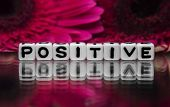 stock photo of mantra  - Positive text with flowers in the background. ** Note: Shallow depth of field - JPG