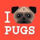 I love pugs. Cute fashion Hipster pug dog pet