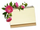 Notebook And Aster Flowers