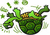 picture of green turtle  - Poor green turtle having trouble when laying on its back - JPG