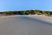 image of tarifa  - geometric patterns in sand at beach at Bolonia - JPG