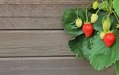 image of strawberry plant  - rustic wooden background with strawberry plant and fruit - JPG