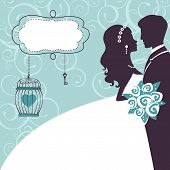 picture of bridal veil  - Elegant wedding couple in silhouette - JPG