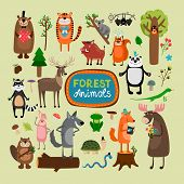picture of lizards  - Vector forest animals set - JPG