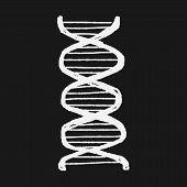 image of gene  - Doodle Gene - JPG