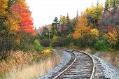 picture of train track  - train track during autumn time in michigan - JPG