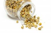 stock photo of chamomile  - Closeup of dried chamomile dried chamomile pouring out of glass jar - JPG