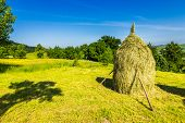 picture of haystack  - landscape with haystack on a green meadow in the mountains - JPG