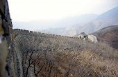 pic of mongol  - The great wall of china outside of beijing in winter - JPG