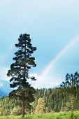 pic of gaul  - Rainbow in mountains - JPG