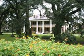 Southern Plantation In Louisiana