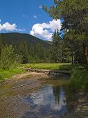 Colorado Headwaters