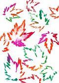 Постер, плакат: Яркие листья