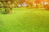 Landscape Formal, Front Yard Is Beautifully Designed Garden, Peaceful Garden, Morning Sunlight Shine poster