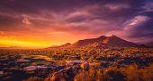 Scottsdale Arizona desert landscape,USA poster