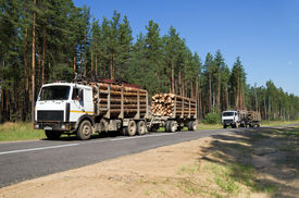 image of logging truck  - Two cars loaded with wood going down hill - JPG