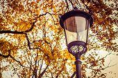 Autumn Park, Yellow Tree And Lantern, Lantern On The Street, Lantern In The Park, Autumn Walk, Lante poster