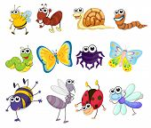 image of mayfly  - Illustration of a group of bugs  - JPG