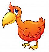 picture of dodo  - Illustration of an orange toucan bird  - JPG