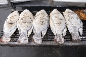 Closeup White Salt Grilled Tilapia Fresh Fish, Local Food Style In Thailand poster