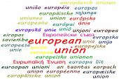 Ways To Say European Union In All 24 Official Languages Of The European Union poster
