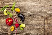 Trendy Ugly Organic Vegetables. Assortment Of Fresh Pepper, Eggplant, Cucumber, Tomato, Pumpkin, Bee poster