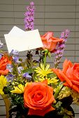 foto of get well soon  - A Bouquet of Flowers with a card - JPG