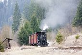 steam train, Ciernohronska Railway, Slovakia